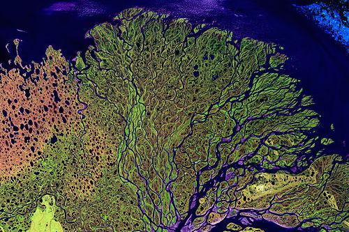 512px-Lena_River_Delta_-_Landsat_2000
